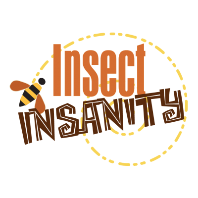 Insect Insanity logo design
